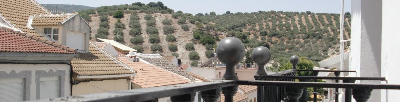 044 View from master bedroom (second floor) Nueva Carteya
