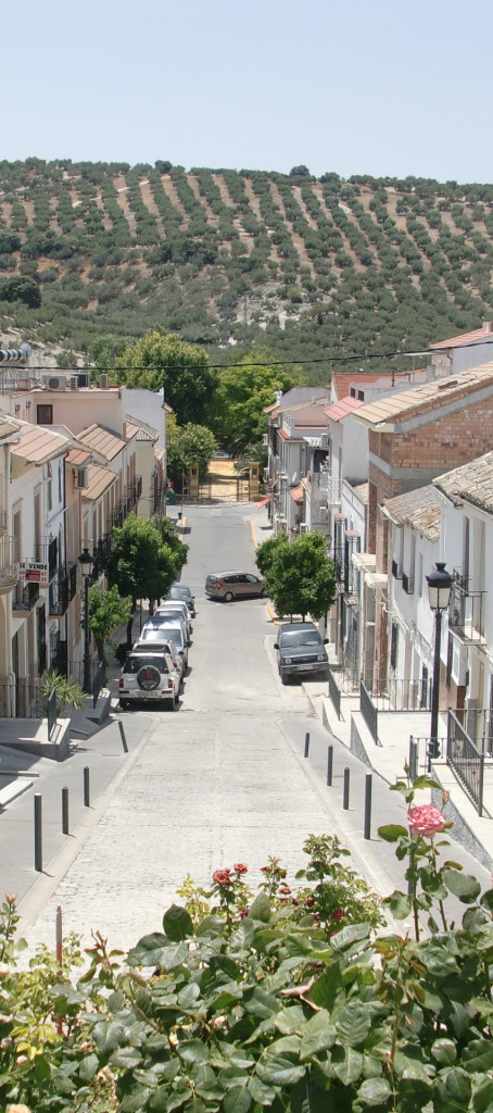 096-Street view-house-on-the-right-narrow nueva carteya